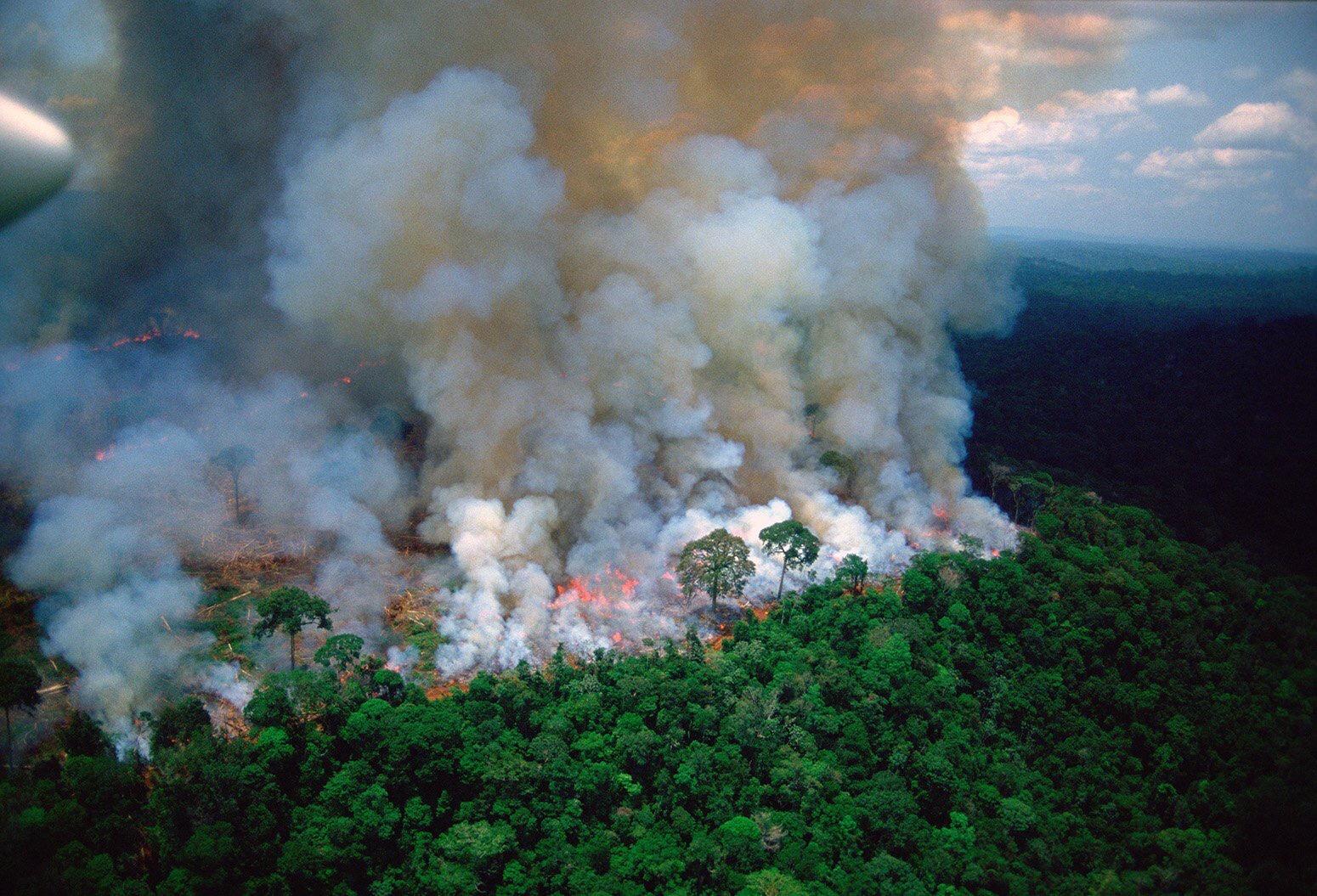 Brazil's President Bolsonaro claims NGOs may be burning the Amazon